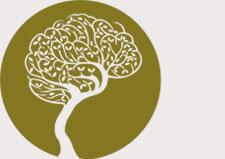 Logo for Mind by Design
